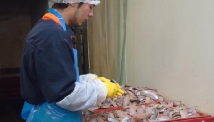 рыбоперерабатывающий плавающий завод в России