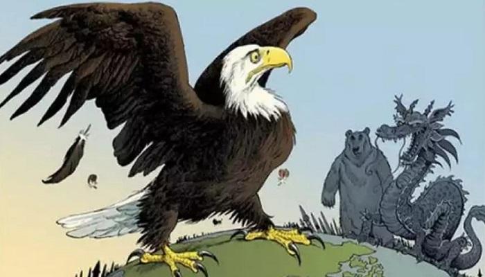 американский орел тупой