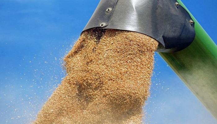 урожай зерновых в России